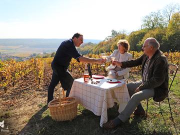 Vente avec paiement en ligne: Expériences sensorielles vigneronnes