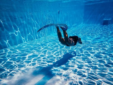 Freediving courses: Discover Freediving in Panglao, Philippines (AIDA 1)