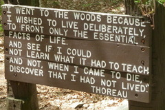 "Online Payment - Group Session - Pay per Session: How to ""Live Deliberately"": Transcendentalism"