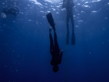 Freediving courses: AIDA 1 Freediving Course in Westfjords Region, Iceland