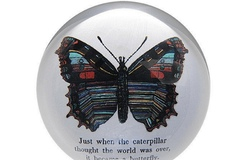 Selling with online payment: Whimsical Glass Paperweights