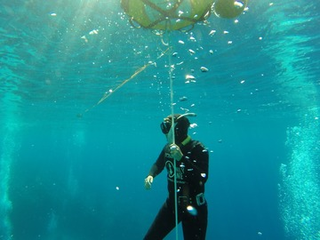 Freediving courses: AIDA 2 Freediver in Sharm el Sheikh