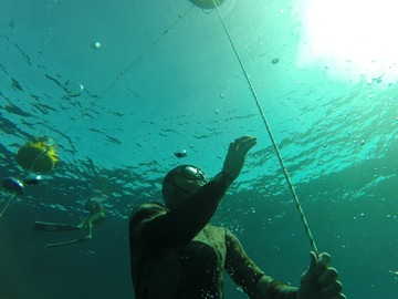 Freediving courses: AIDA 1 Freediver in Sharm el Sheikh