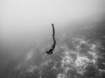 Freediving courses: Beginner Freediving Course in Panglao, Philippines (Apnea Total)
