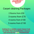 Offering-Per hour service: Carpet cleaning/ domestic cleaning