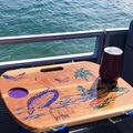 Selling with online payment: Solar Charging Beach Table / Boat / Swimming Pool - Pelican