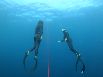 Freediving courses: AIDA 2 Freediving course Panglao, available from October 2020
