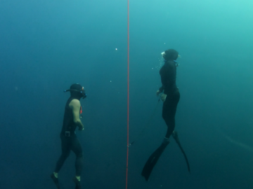 Freediving courses: AIDA 3 Freediving course in Panglao, Philippines (→Oct. 2020)