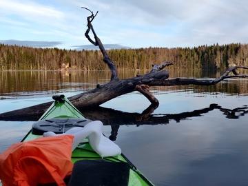 Leier ut (per day): Seabird Åfjord kajakki