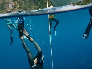 Freediving courses: Crossover Instructeur d'Apnée Molchanovs Freediving (en ligne)