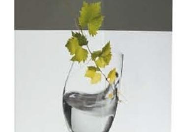 Vente avec paiement en direct: BIB 5L Vin Blanc Sec