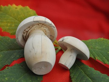 Workshop Angebot (Termine): Pilze drechseln (Einzelkurs)