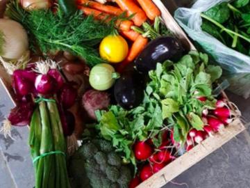 Offre: De nos champs à votre assiette - vente direct