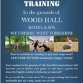 Offering-Per hour service: Personal training in the beautiful West Yorkshire countryside.