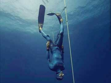 Freediving courses: Molchanovs Wave 2 Freediving Instructor Crossover (online)