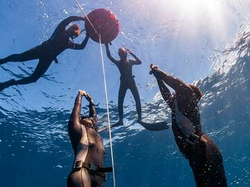 Freediving courses: Apnea Total Level 2 Freediving Course in Brucoli, Sicily (1 on 1)