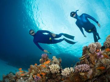 Freediving courses: Molchanovs Wave 1 Course in Nusa Penida, Indonesia.