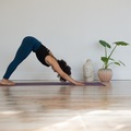 Class Offering: Customized Yoga Classes