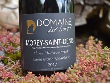 Vente avec paiement en direct: Morey st Denis