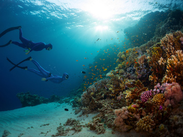 Freediving courses: Try Freediving Course in Nusa Penida, Indonesia
