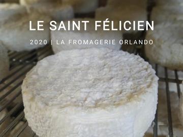 Vente avec paiement en direct: Saint Félicien