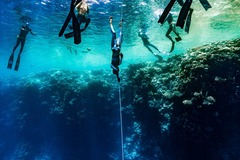Freediving courses: Freediving Coaching Session in Jeju, Korea