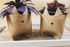 Selling with online payment: Kitty Planters