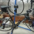 Weekly Rate: Specialized SWORKS carbon Road Bike - size large (56cm)