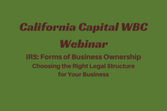 Workshop: IRS:  Forms of Business Ownership