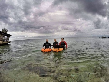 Freediving courses: Molchanovs Wave 2 Freediving Course (Theory only / Online)