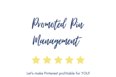 Offering online services: Pinterest Promoted Pin Management