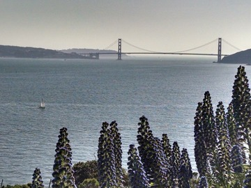 Event: Escape To Angel Island: 10/30-11/1