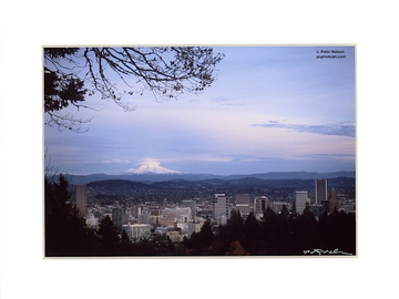 Selling with online payment: Portland, the light on the mountain.