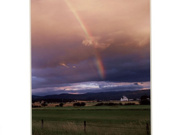 Selling with online payment: Montana Rainbow