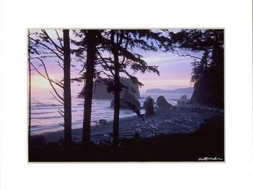 Selling with online payment: Ruby Beach Sunset