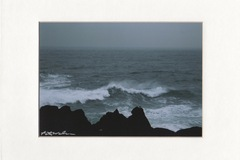 Selling with online payment: Winter Sea, North Pacific ( Oregon )