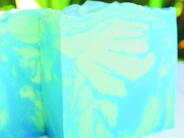 Selling with online payment: High Tide Artisan Soap