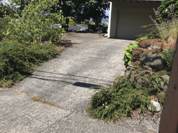 Monthly Rentals (Owner approval required): Off site parking near Alki Beach, Seattle