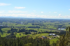 Book on LiveLocal or Other Platforms: Relax or explore the Waipa for 3 people