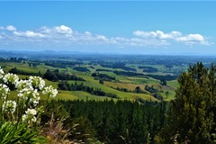 Book on LiveLocal or Other Platforms: Relax or explore the Waipa for 4 people
