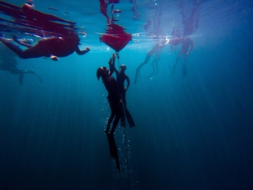 Freediving courses: SSI Freediving - Level 1