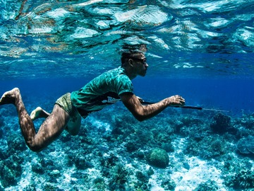 Cours d'apnée: Online Freediver Course for Spearfishers - AIDA 1&2 (theory only)