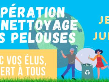 Actualité: Nettoyage des pelouses au Vésinet