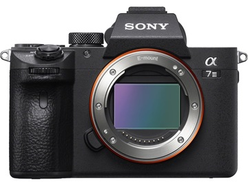 Renting out with online payment: Sony Alpha a7 III
