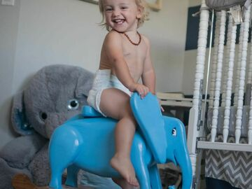 Selling with online payment: Children's Animal Rocker