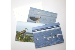 Selling with online payment: Greeting Card Sets (3 per set)