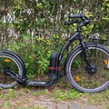 Renting out (per day): Kickbike eCruise