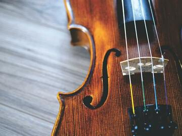 Online Payment - 1 on 1: The Art of Playing the Violin