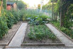 NOS JARDINS A PARTAGER: Jardin potager à partager