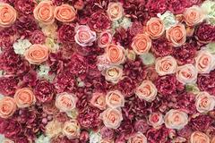 Ilmoitus: Kukkaseinä